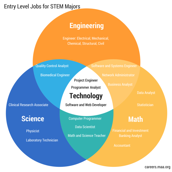 Stem Entry Level Job