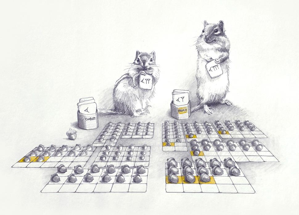 Chipmunks sorting