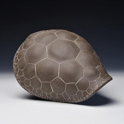 Shell by Elizabeth Paley | Mathemalchemy Project