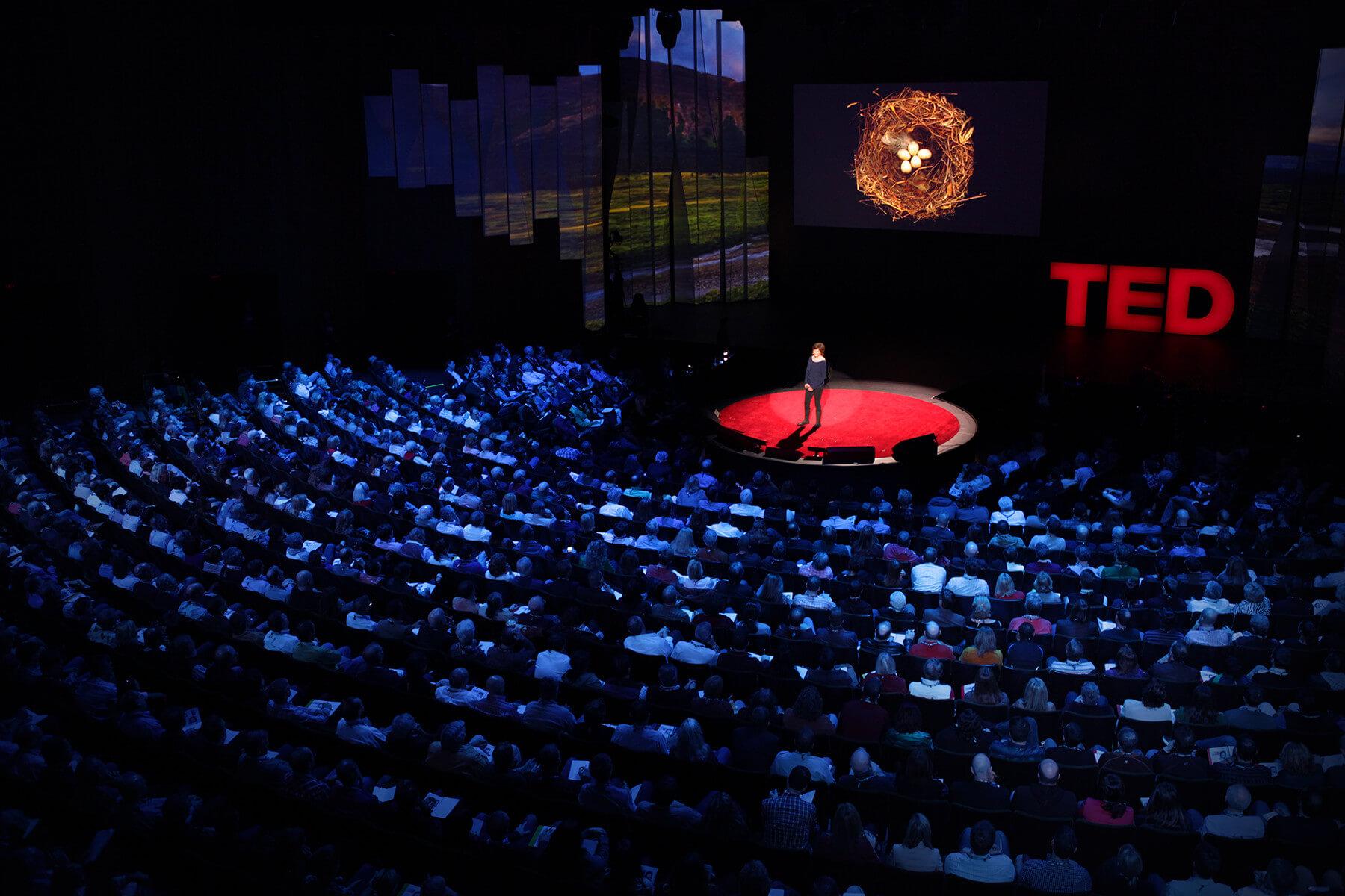 falar em público – TED