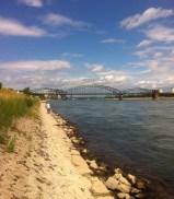 Rheinspaziergang2 Juli 2014
