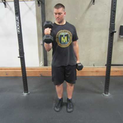 Dumbbell Hammer Curl Exercise 1