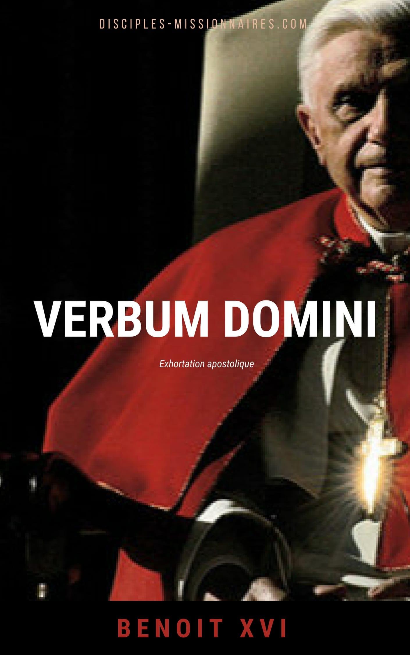 Téléchargez Verbum Domini en format eBook