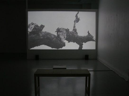 projektion_gren