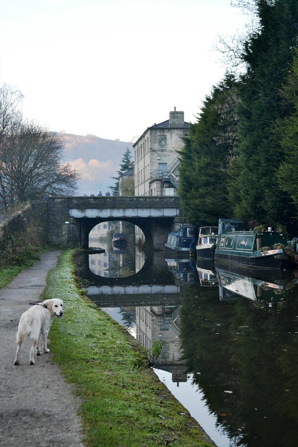 polly-in-hebden-bridge