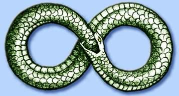 uroboro, il serpente che si morde la coda e si rigenera continuamente, possibile origine del simbolo dell'infinito