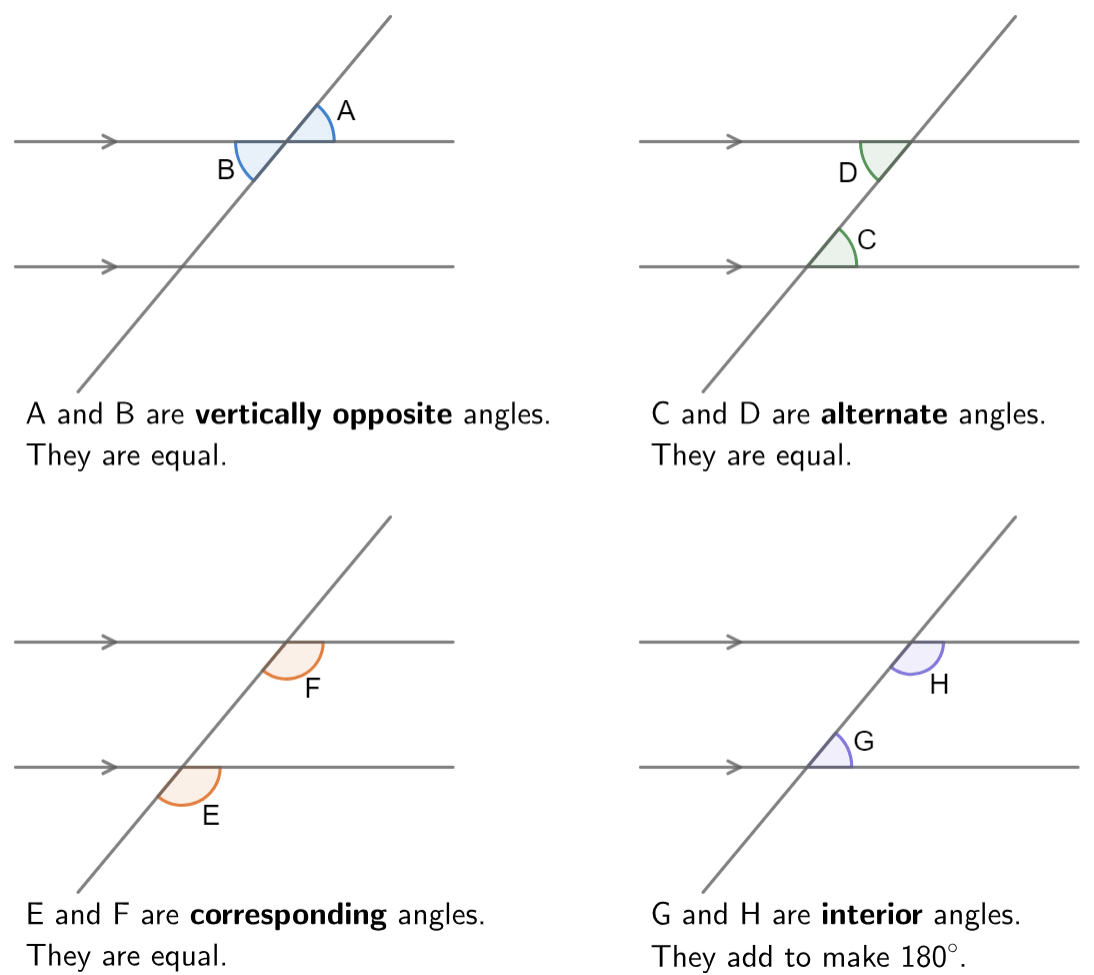Vertically Opposite Angles Worksheet Year 6