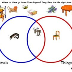 Venn Diagram Sorting Shapes Mini Quad Wiring Classifying And Archives Maths Zone Cool Learning Games Sort Animals Things With Four Legs In A Ks 1