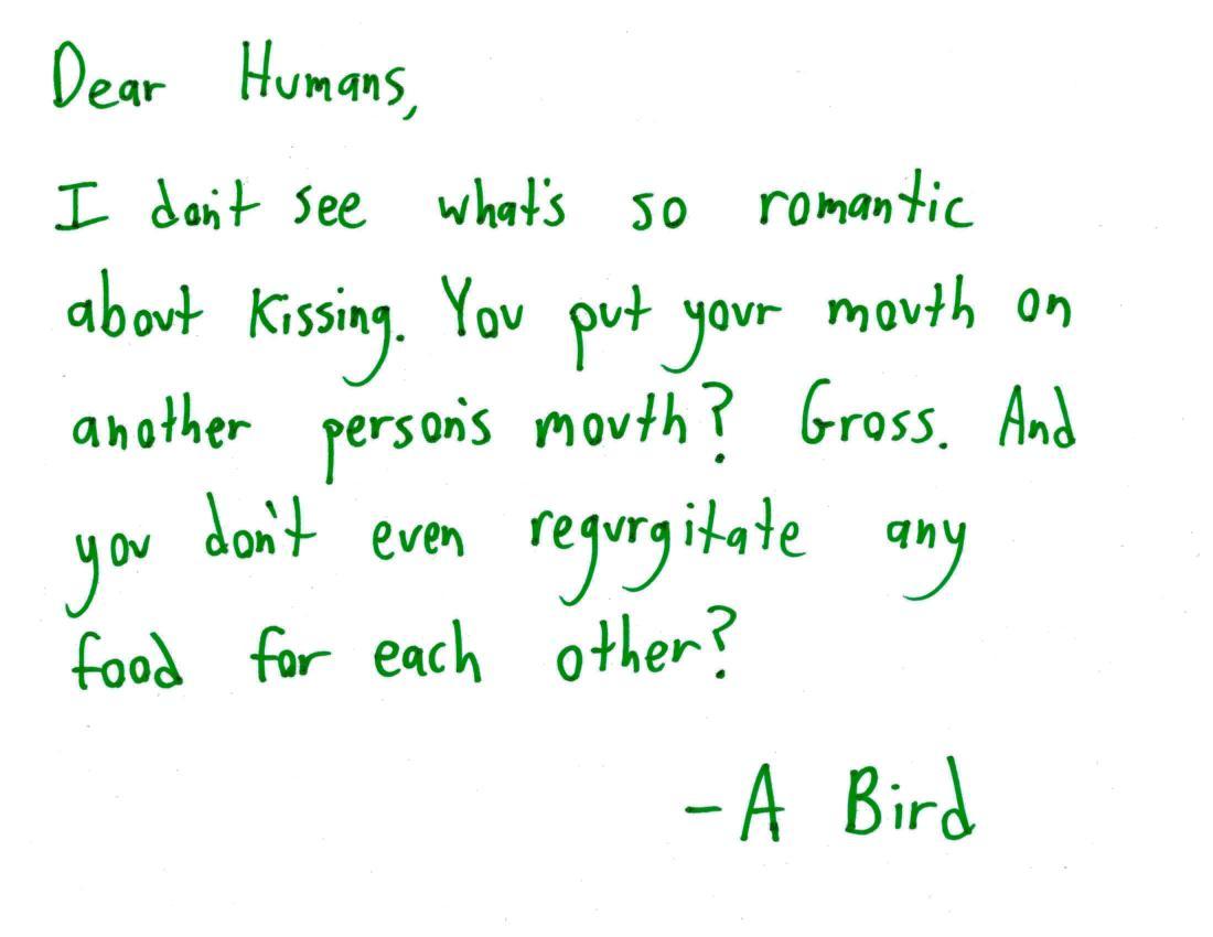 2017.9.1 bird to humans
