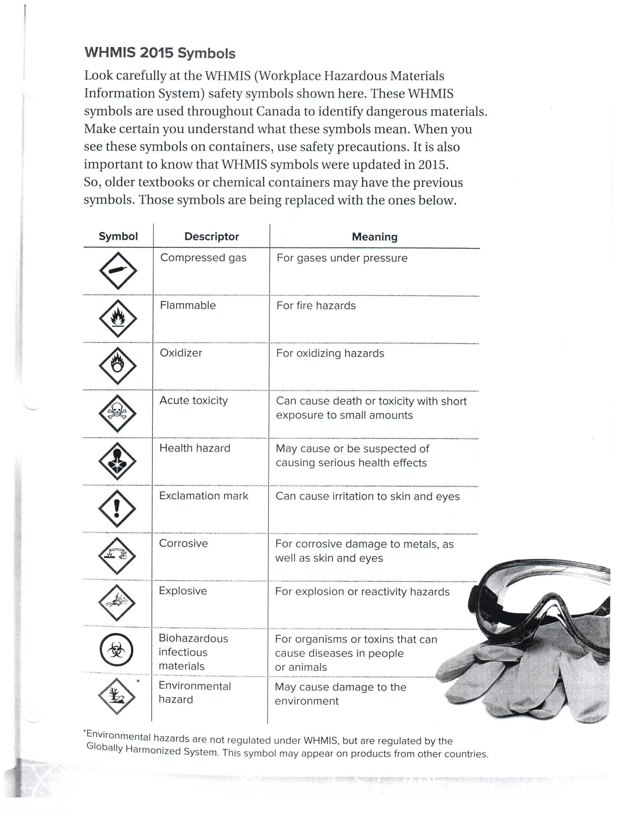 hight resolution of Lab Safety Symbols Worksheet - Nidecmege
