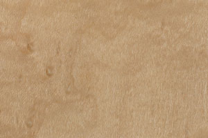 Bird's Eye Maple by Pacific Traders