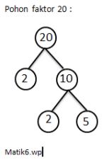 Cara Faktorisasi : faktorisasi, Faktor, Prima, Faktorisasi, Dengan, Pohon, Matikkelas6
