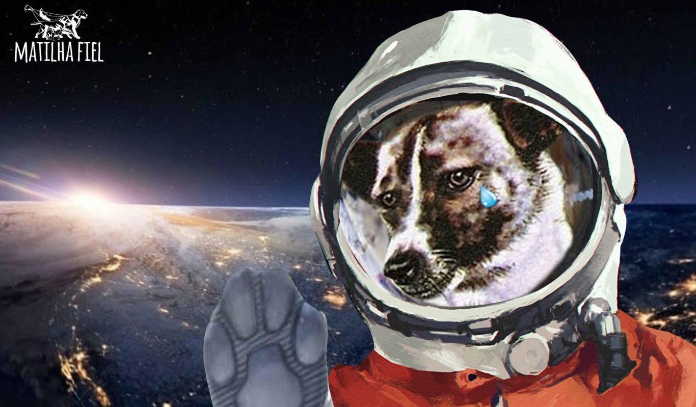 laika a pioneira no espaço