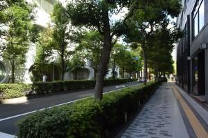 令和元年9月7日 第2回「公共空間の活用とまちづくり」の講座(タウンウォッチング)
