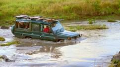 safari-river