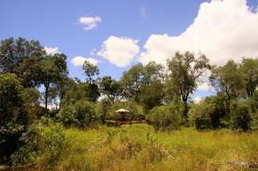matira-bushcamp-maasai-mara-camp-matira-safari-adventure-camp00002