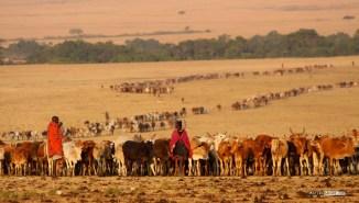 matira-safari-bushcamp-activities-maasai-village-00002