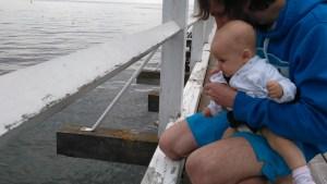 wiki obserwuje morze niemowlak