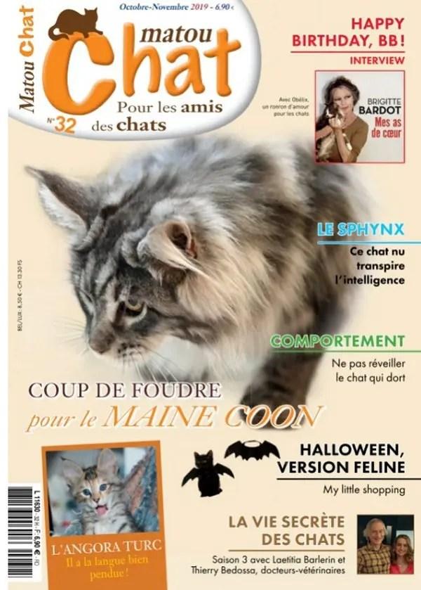 La Vie Secrete Des Chats Saison 3 : secrete, chats, saison, Secrete, Chats, Saison