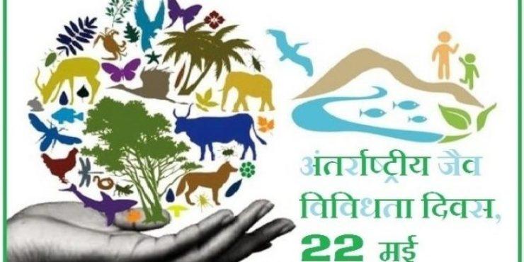 बिहार में जैव विविधता की विरासत को विकसित किए जाने की अपार संभावना : डॉ. एनके अग्रवाल
