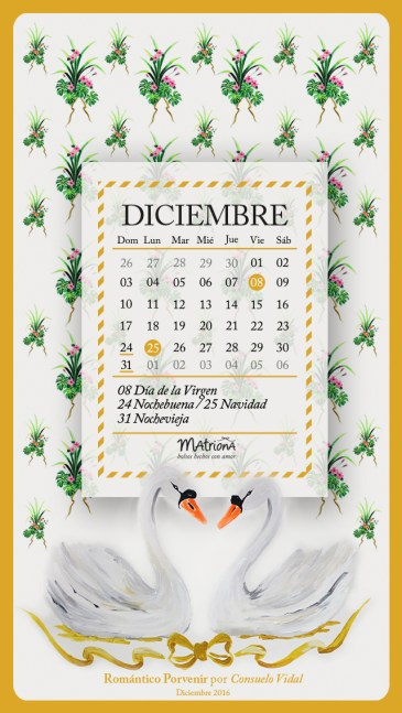 mtna-calendario2017-cel-dic