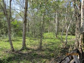 Property for sale at 00 County Road 223, Freeport,  Texas 77541