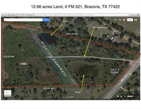 Property for sale at 0 Fm 521, Brazoria,  Texas 77422