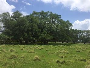 Property for sale at 30 County Road 32, Angleton,  Texas 77515