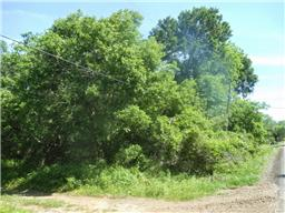 Property for sale at 0 County Road 924, Sweeny,  Texas 77480