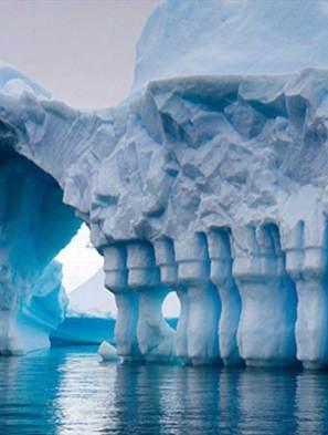 Antarctica-Saga
