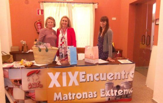 XIX Jornadas de APMEX