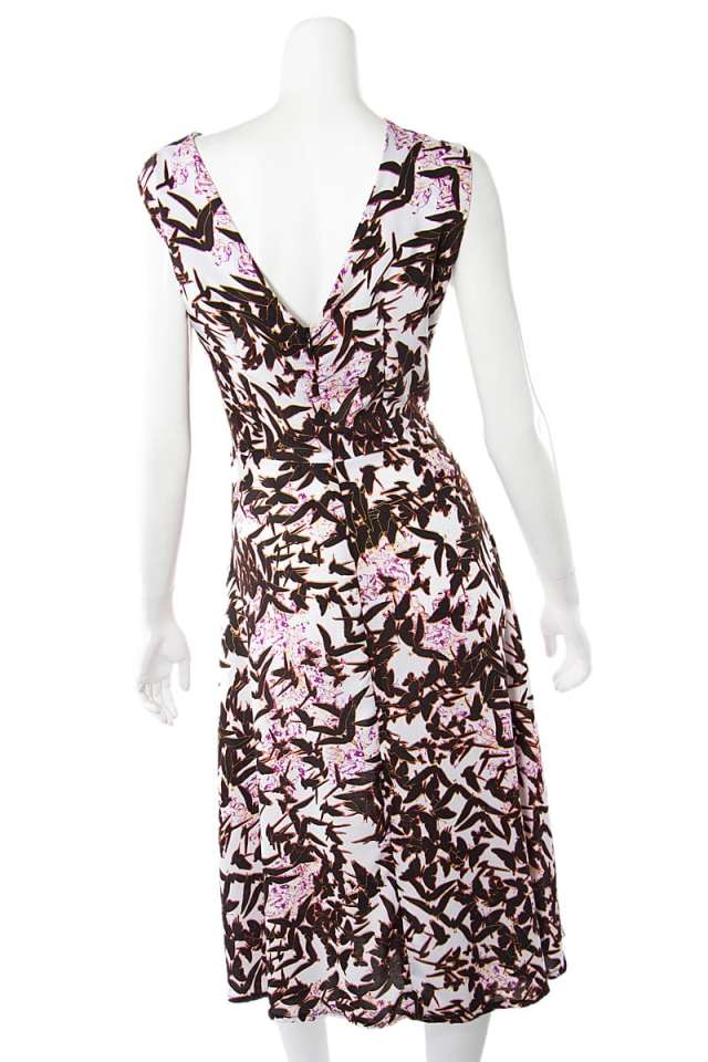 Black Birds and Butterfly Dress