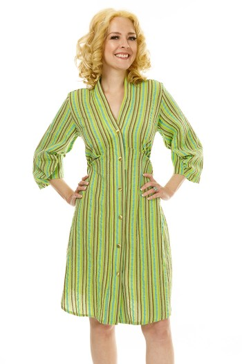 Green and Gold Shirt Dress