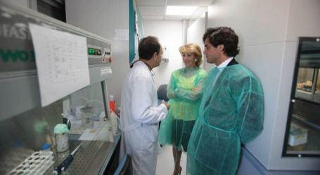 Aguirre 'regaló' durante dos años las bolsas de sangre a la Fundación Jiménez Díaz