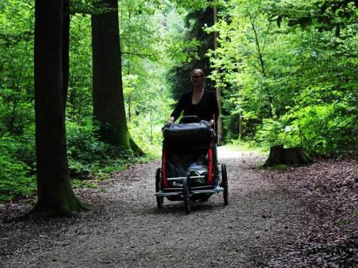 Spazieren mit Chariot CX
