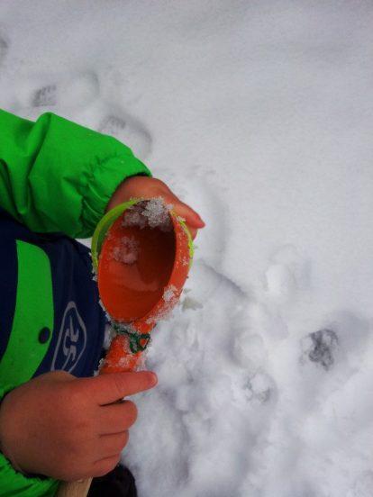 Sandspielzeug-im-Schnee