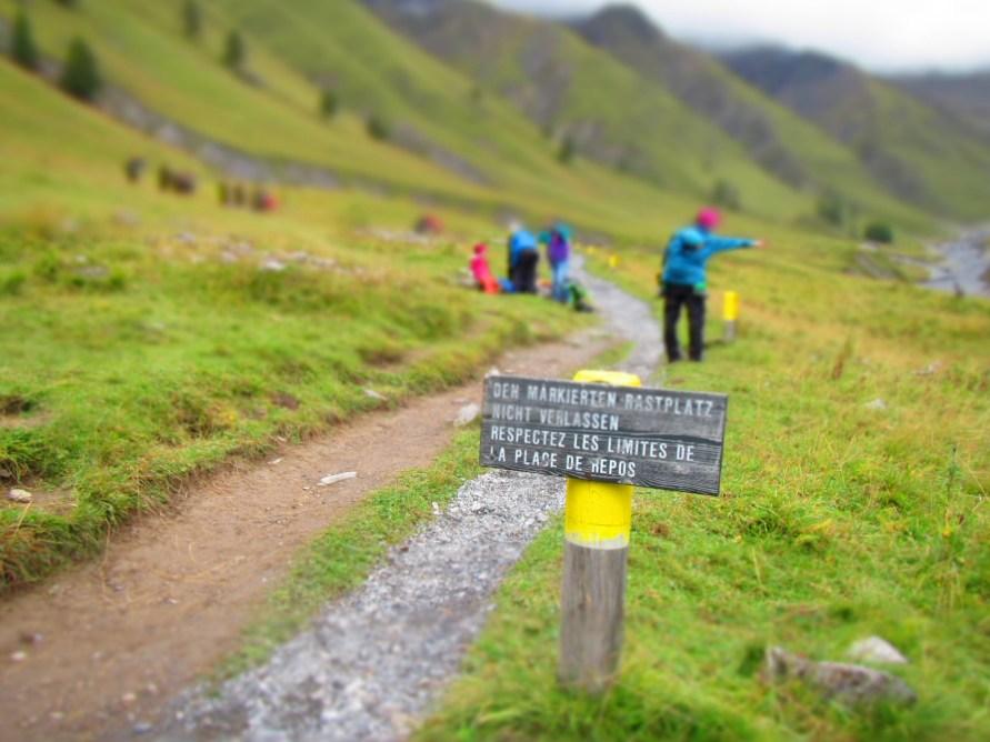 Schweizer Ordnung im Nationalpark
