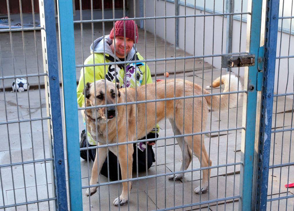 センターに保護されている犬と飼育員。檻には犬の名前、年齢、性別、性格、注意事項まで細かく掲示されている © Matsuda Masahiro