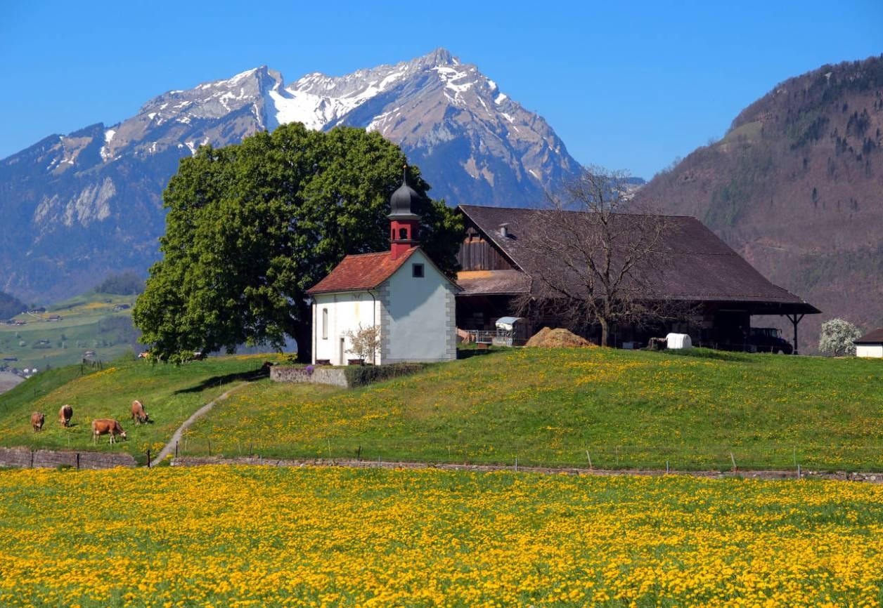 ブリエンツ(スイス)の春の風景、2019年4月撮影 © Matsuda Masahiro
