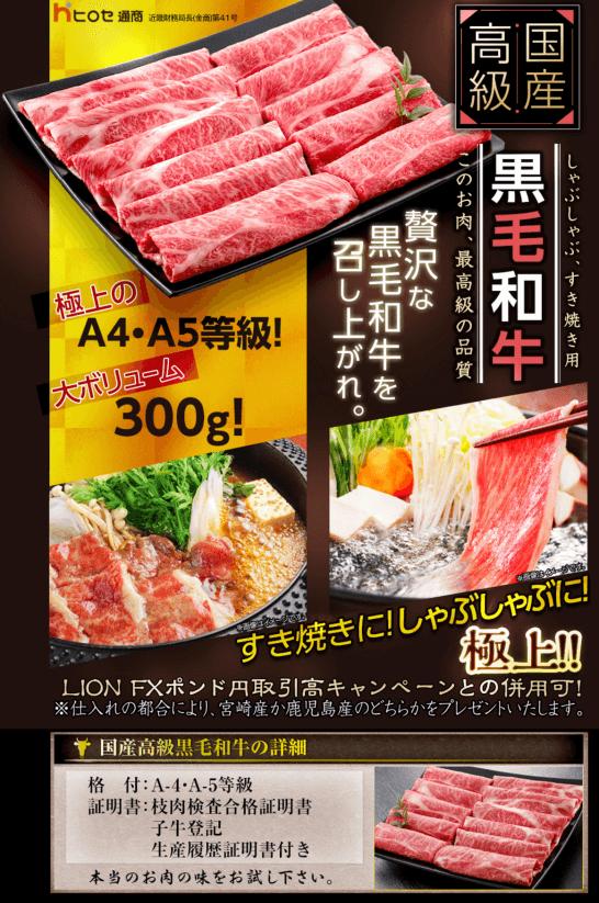 ヒロセ通商の牛肉プレゼントキャンペーンの説明