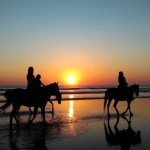 夕陽の中の海辺での乗馬