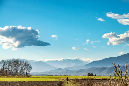 海外の田園