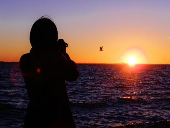 夕日の前で鳥を撮影する姿