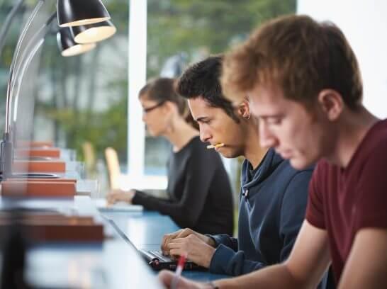 作業に集中する大学生