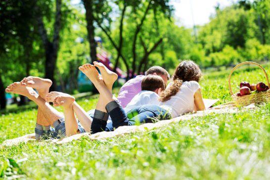 草原に寝そべる家族
