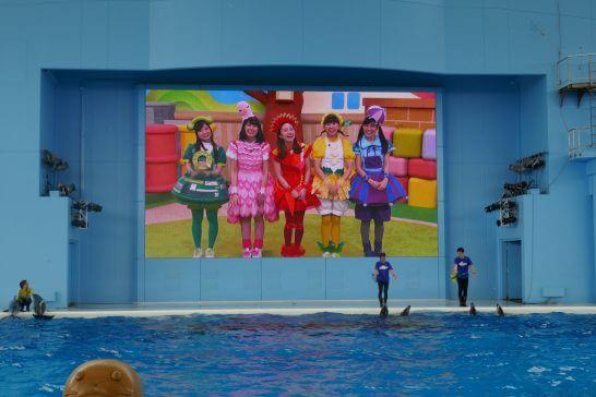 八景島シーパラダイスのショー20