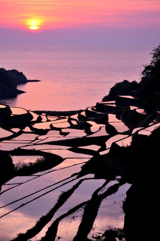 佐賀県の浜野浦の棚田