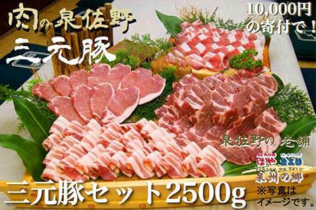 大阪府泉佐野市の三元豚セット2500g