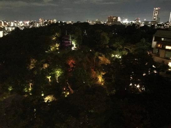 椿山荘の夜の日本庭園