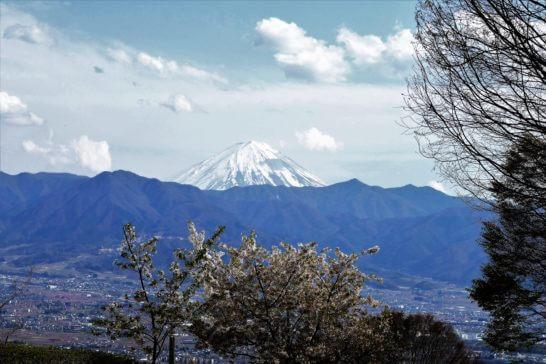 フルーツパーク公園から見える富士山